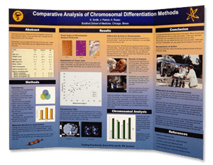 scientific tri fold poster displays - Tri Fold Display Board Design Ideas