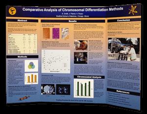 Scientific Tri Fold Poster Displays. Tri Fold Presentation Poster Boards ...